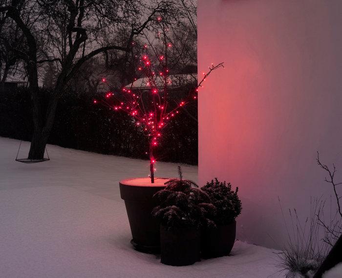 Lyskæde med 100 røde LED-pærer