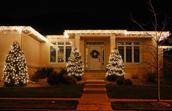 Ljusnät PRO 100 LED - Utbyggnadsbar