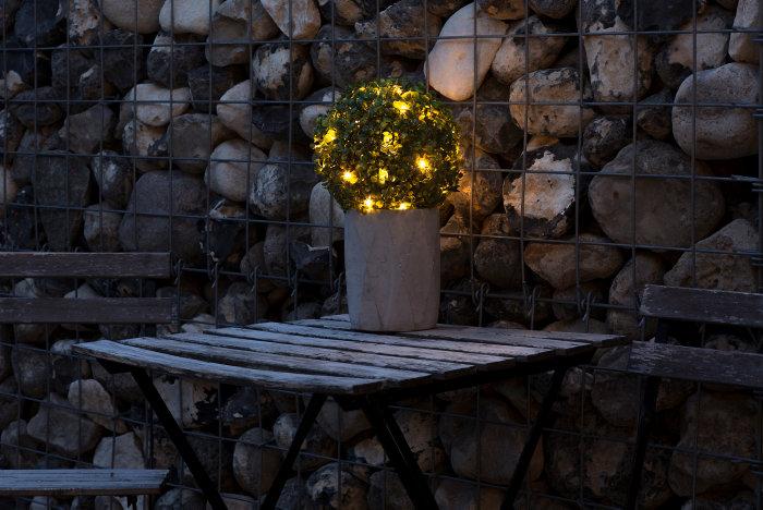 Buksbum med 30 LED - Ø21 cm