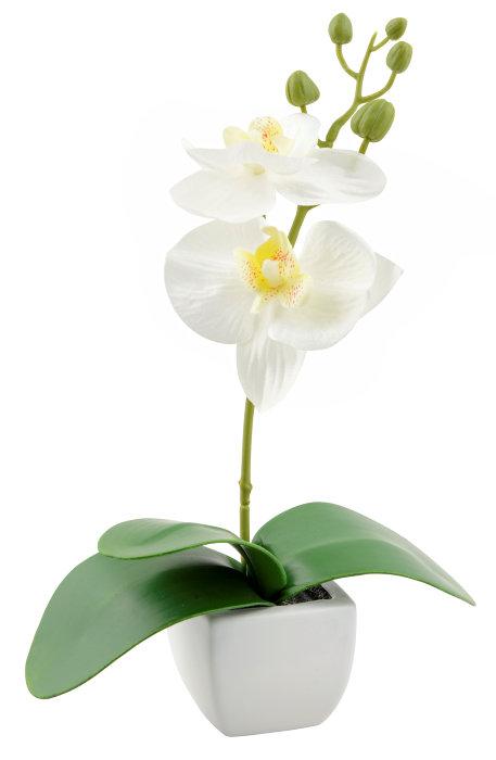 Orkide kunstig 22,5 cm