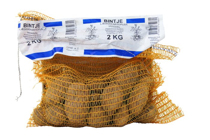 Læggekartofler Bintje 2 kg