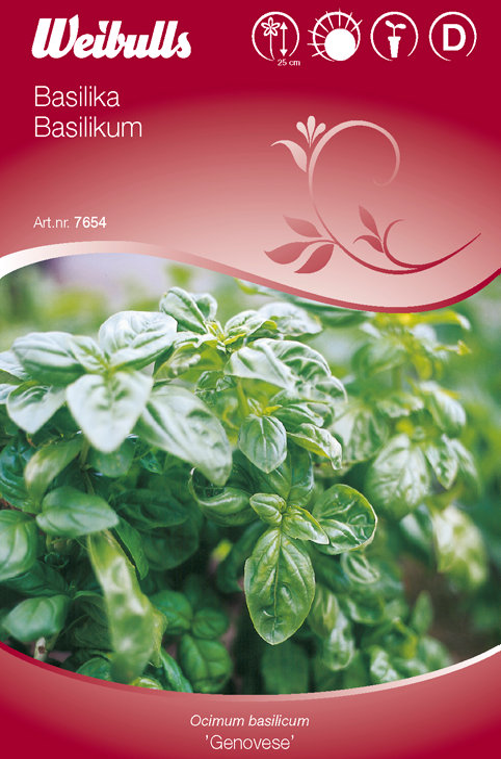 Basilikum - Genovese