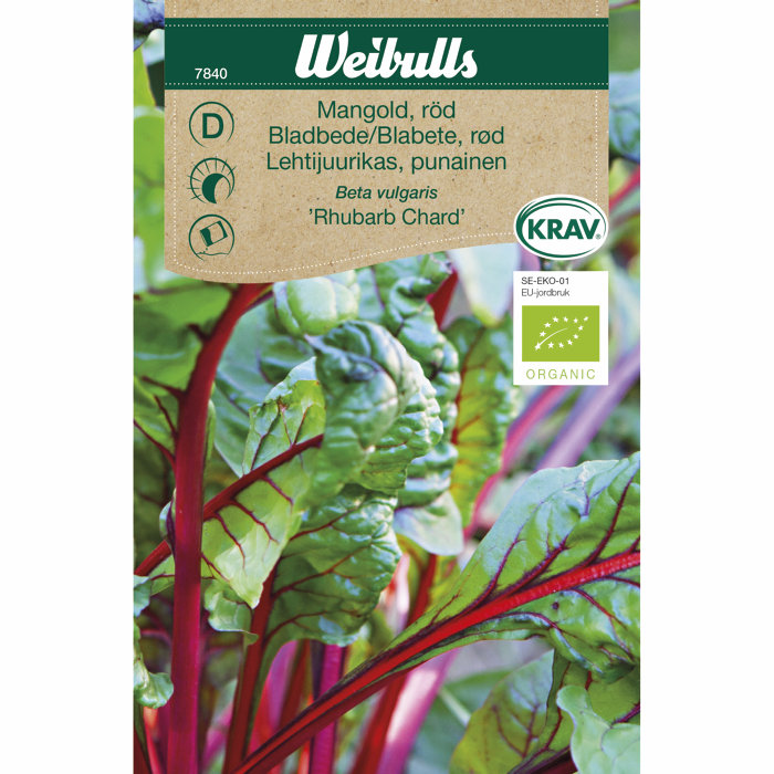 Bladbete, rød økologisk - Rhubarb Chard