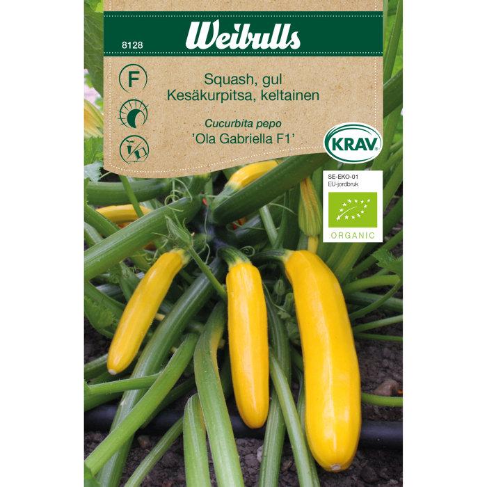 Squash gul økologisk - Ola Gabriella F1