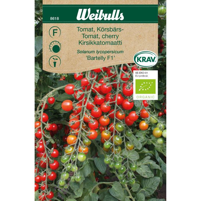 Cherrytomat økologisk - Bartelly F1