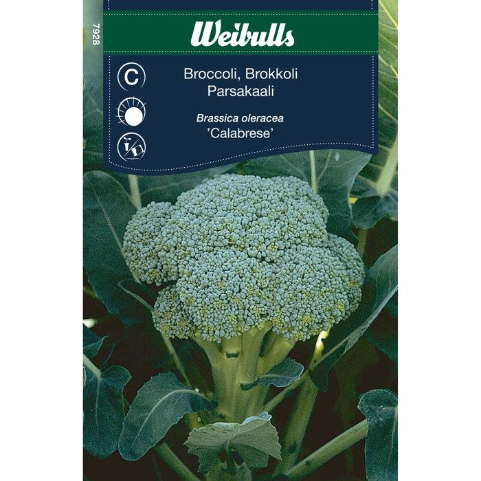 Broccoli - Calabrese