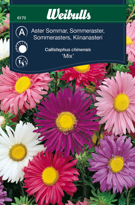 Sommerasters ´Mix`