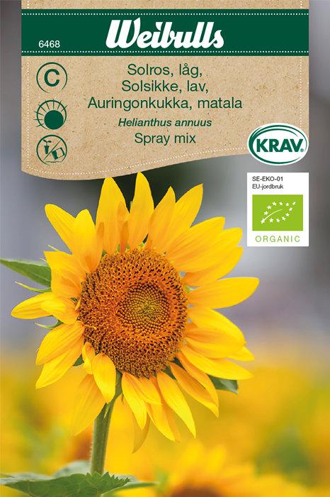Solsikke lav økologisk - Spray mix