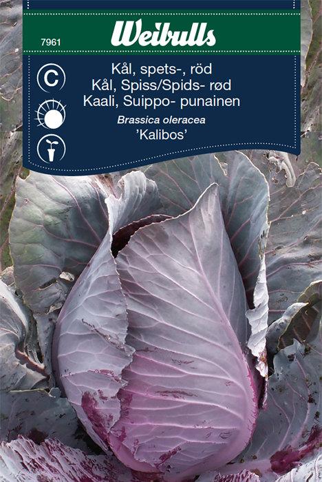 Rød spidskål - Kalibos