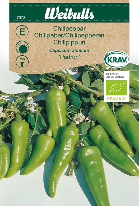 Chilipeber økologisk - Padron