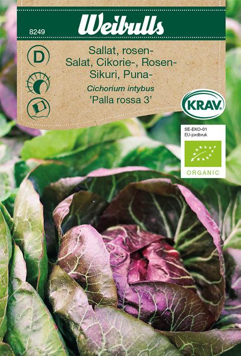 Rosensalat økologisk - Palla rossa 3