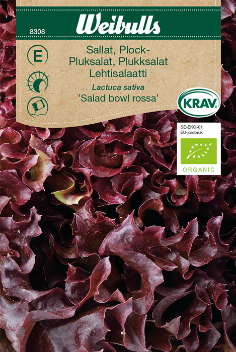 Rød plukksalat økologisk - Salad Bowl rossa