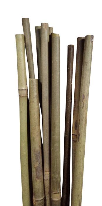 Bambupinne 150 cm