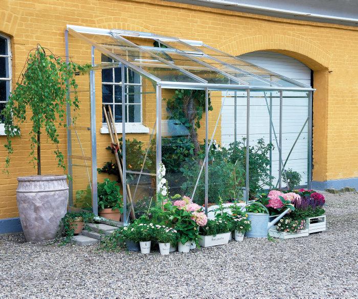 Växthus Royal 608