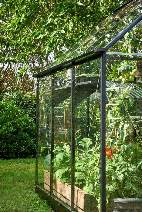 Växthus Qube 66