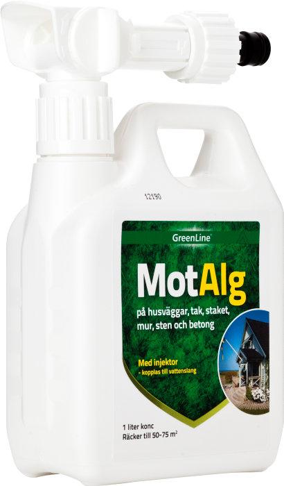 MotAlg