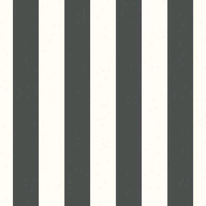 Tapet Fiona Architect Stripes Svart Vit